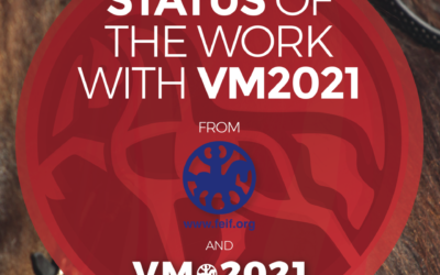 Status of the work with VM2021